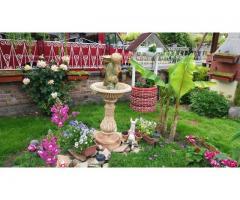 Нашия градински кът